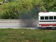 ... Mit umweltfreundlichen Bussen ...