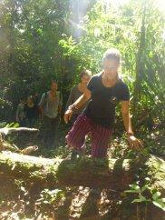 Ein weiteres Mal im Regenwald ...