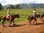 08 ..oder dem Reiten durchs Tal, durften wir die atemberaubende Landschaft kennen lernen